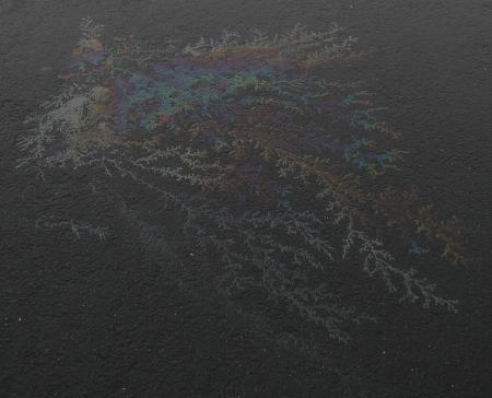 Olievlek44752_5942.jpg